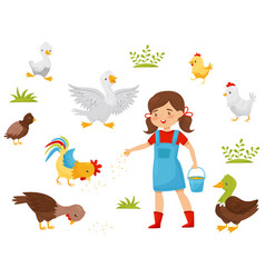 flat set of farm birds little girl with vector image