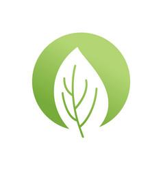 green leaf emblem eco logo bio sign vector image