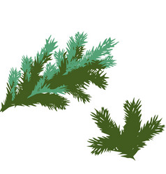 green spruce branches elements on white background vector image