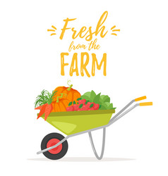hand cart trolley with vegetables vector image
