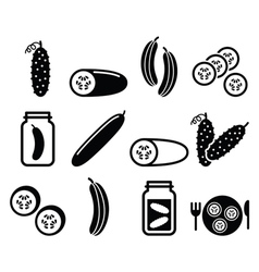 Cucumber pickled cucumber slices - food icons vector image vector image