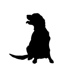 black silhouette dog isolated image vector image