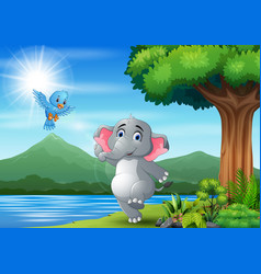 scene with elephant and blue bird having fun at na vector image