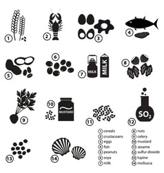 set of typical food alergens for restaurants and vector image