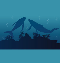 Silhouette of big whale and reef on ocean vector
