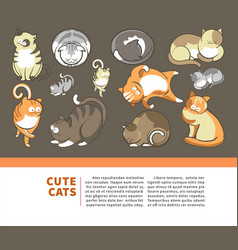 cats and cute kittens pets playing or posing vector image