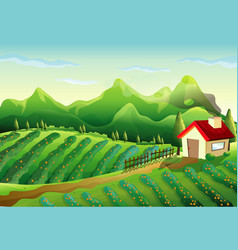 farm in nature scene with little house and green vector image