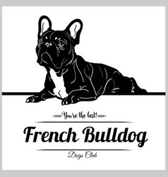 French bulldog - for t-shirt vector