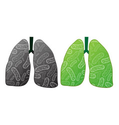 Health and ilness lungs vector