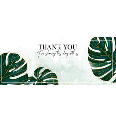 Monstera evergreen tropical palm leaves jungle vector