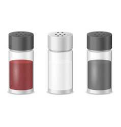 Realistic detailed 3d glass sea salt and pepper vector