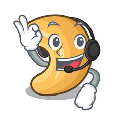 With headphone roasted cashew nuts isolated on vector