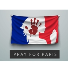 Pray for Paris terrorism attack flag france vector image