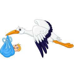 cartoon stork carrying baby vector image vector image