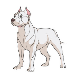 color a pit bull dog vector image