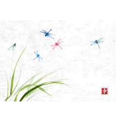 Dragonflies flying over grass on rice paper vector