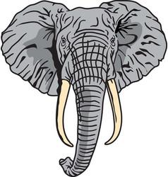 Elephant logo mascot vector