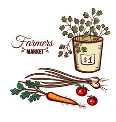 farmers market green vegetables vector image
