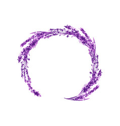 lavender flower round twig watercolor vector image