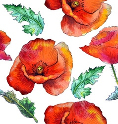 Poppies seamless vector image
