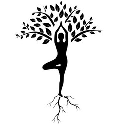 yoga tree pose silhouette vector image