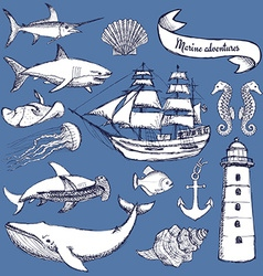Sketch set of marine elements vector image