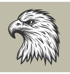 Eagle head in profile vector image