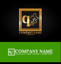 03 oak letter q vector image