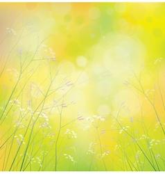 Background wildflowers vector