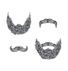 beard set vector image