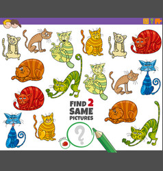 Find two same cats educational task for kids vector