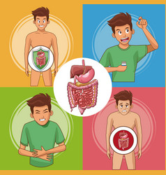 Set of digestive system cards vector