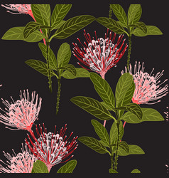 Tropical protea flowers and exotic green leaves vector