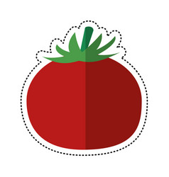 Cartoon tomato vegetable healthy food vector