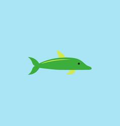 Dolphin delphinus delphis vector