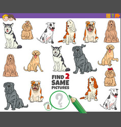 Find two same purebred dogs task for kids vector
