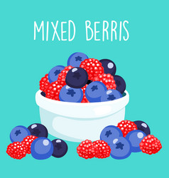 Fresh mixed berries sprout in white bowl vector
