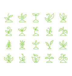 Grass simple color line icons set vector