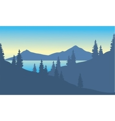 Landscape mountain with spruce vector