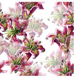 Seamless pattern with lilies flowers vector