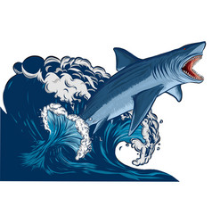 Shark with open mouth in sea flat vector
