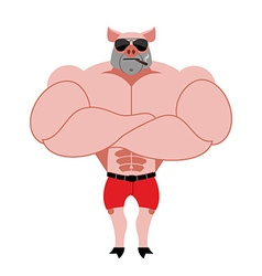 Strong pig bodybuilder with huge muscles Farm vector image
