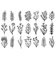 0172 hand drawn flowers doodle vector