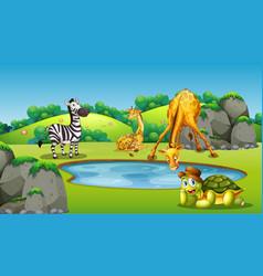 Animals around pond scene vector