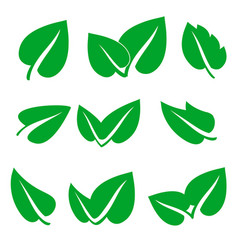 green spring leaf icons set stock vector image