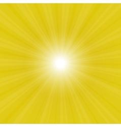 sunburst back vector image vector image