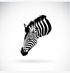 an zebra head on white background wild animals vector image