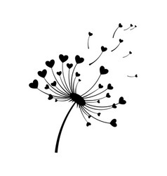 dandelion with hearts black and white vector image