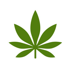 Marijuana or cannabis leaf icon logo vector