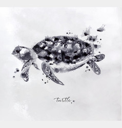 monotype turtle black vector image